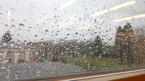 Piova le gocce Fotografie Stock