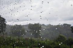 Piova nella foresta, nello sfondo naturale e nella struttura Immagine astratta vaga immagine stock libera da diritti