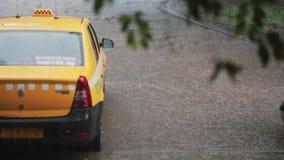 Piova piovere a dirottoe su un'automobile e su una pavimentazione del taxi I rami vaghi di un albero ondeggiano nel vento archivi video