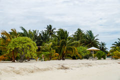 Piova sulla spiaggia, Maldive, Ari Atoll fotografia stock