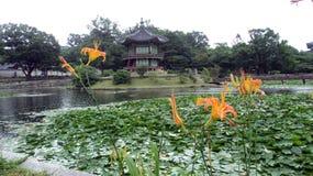 Piovendo dentro il palazzo di Gyeongbokgung, allo stagno di Lotus con i fiori arancio fotografia stock