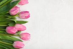 Piovuto appena sopra Tulipano dentellare su priorità bassa bianca Disposizione piana Vista superiore con lo spazio della copia Immagine Stock