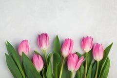 Piovuto appena sopra Tulipano dentellare su priorità bassa bianca Disposizione piana Vista superiore con lo spazio della copia Fotografie Stock