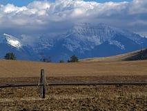 Pipe d'irrigation, zone et montagnes couronnées de neige Photographie stock libre de droits