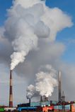 Pipe de fumage d'usine Photos stock