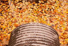 Pipe emptying into autumn leaves on water. Gray metal pipe emptying into orange autumn leaves floating on water Stock Photos