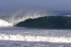 Pipe Line 2004. Wave at PipeLine on the North Shore of Oahu Stock Photography