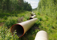 Pipe line. Gas pipe line that laid through green wood Royalty Free Stock Image
