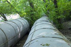 Pipe line that laid through the forest. Metal pipe line of big diameter that laid througt the forest Royalty Free Stock Images