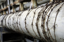Pipe. Old water pipes wrapped with barbed wire Royalty Free Stock Photos