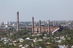 Pipe plant in Shymkent. Kazakhstan. In the park in nature stock photos