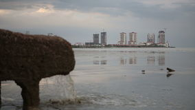 Pipe of Sewer Water from Sewage System Directly near Sea. In city with skyscrapers change focus stock video