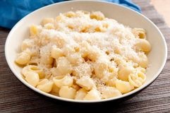 Pipe pasta alfredo. Pipe or shell pasta with a creamy alfredo sauce and parmesan cheese Stock Images