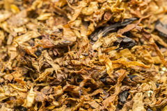 Pipe Tobacco Stock Photos