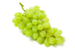 Pipe white grape bunch Stock Image