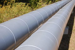 pipeline Arkivbilder