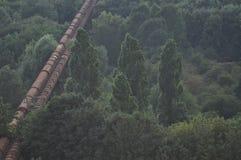 Pipeline through forest Stock Photos