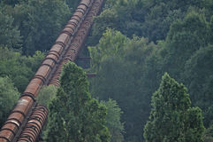 Pipeline through forest Royalty Free Stock Photos