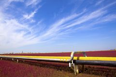 Pipeline. Red Beach on the oil pipeline royalty free stock photos