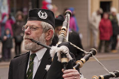 The Piper Stock Photo