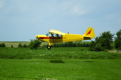 Piper PA-18 Super Cub. A Piper PA-18 Super Cub landing in a rural airfield royalty free stock photos
