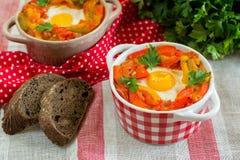 Piperade Basque do prato com pimentas e tomates Fotografia de Stock