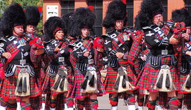 Pipers Royalty Free Stock Photography