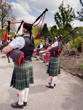 Pipers Royalty Free Stock Image