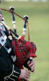 Pipes écossaises de sac Images libres de droits