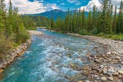 Pipestone-Fluss Lizenzfreies Stockfoto