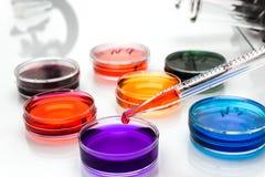 Pipeta com gota do líquido da cor e dos pratos de petri imagem de stock
