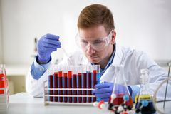 Pipetta concentrata e funzionamento della tenuta del chimico al laboratorio Fotografia Stock