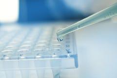 Pipetta di ricerca della cellula staminale fotografia stock