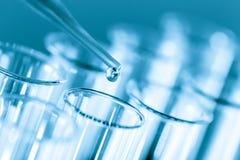 Pipetta microbiologica delle provette Fotografia Stock