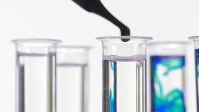 Pipette depositing drops of blue dye in rotating test tubes. Closeup of test tubes on white background stock footage