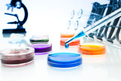 Pipette with drop of color liquid and petri dishes Royalty Free Stock Images