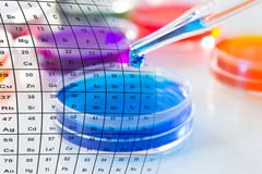 Pipette with drop of color liquid and petri dishes. Royalty Free Stock Photography