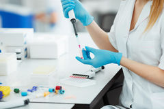 Pipette dropping a sample in a test tube. Laboratory assistant analyzing blood in lab. DNA analysis.  Royalty Free Stock Photos