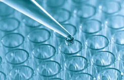 Pipette  load samples Royalty Free Stock Photos