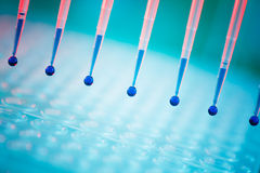 Pipette Royalty Free Stock Photo