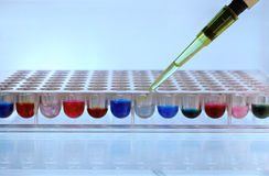 Pipetting sample Royalty Free Stock Photos