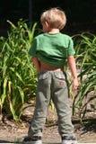 Pipi del bambino fotografia stock libera da diritti