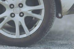 Pipi del ` s del cane alla ruota di automobile immagine stock