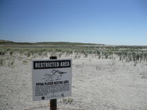 Piping Plover Sign on Long Beach, Long Island. Stock Photo