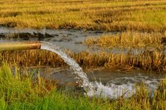 Pumping water into the fields. royalty free stock photo