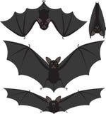 Pipistrelli Immagini Stock Libere da Diritti