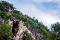 Pipistrelli che volano dalla caverna del pipistrello, Battambang Fotografie Stock Libere da Diritti