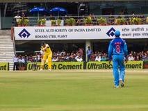 Pipistrelli del battitore del cricket Fotografia Stock