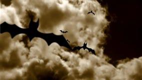 Pipistrelli di Halloween archivi video