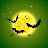 Pipistrelli su un fondo del cielo stellato Fotografia Stock